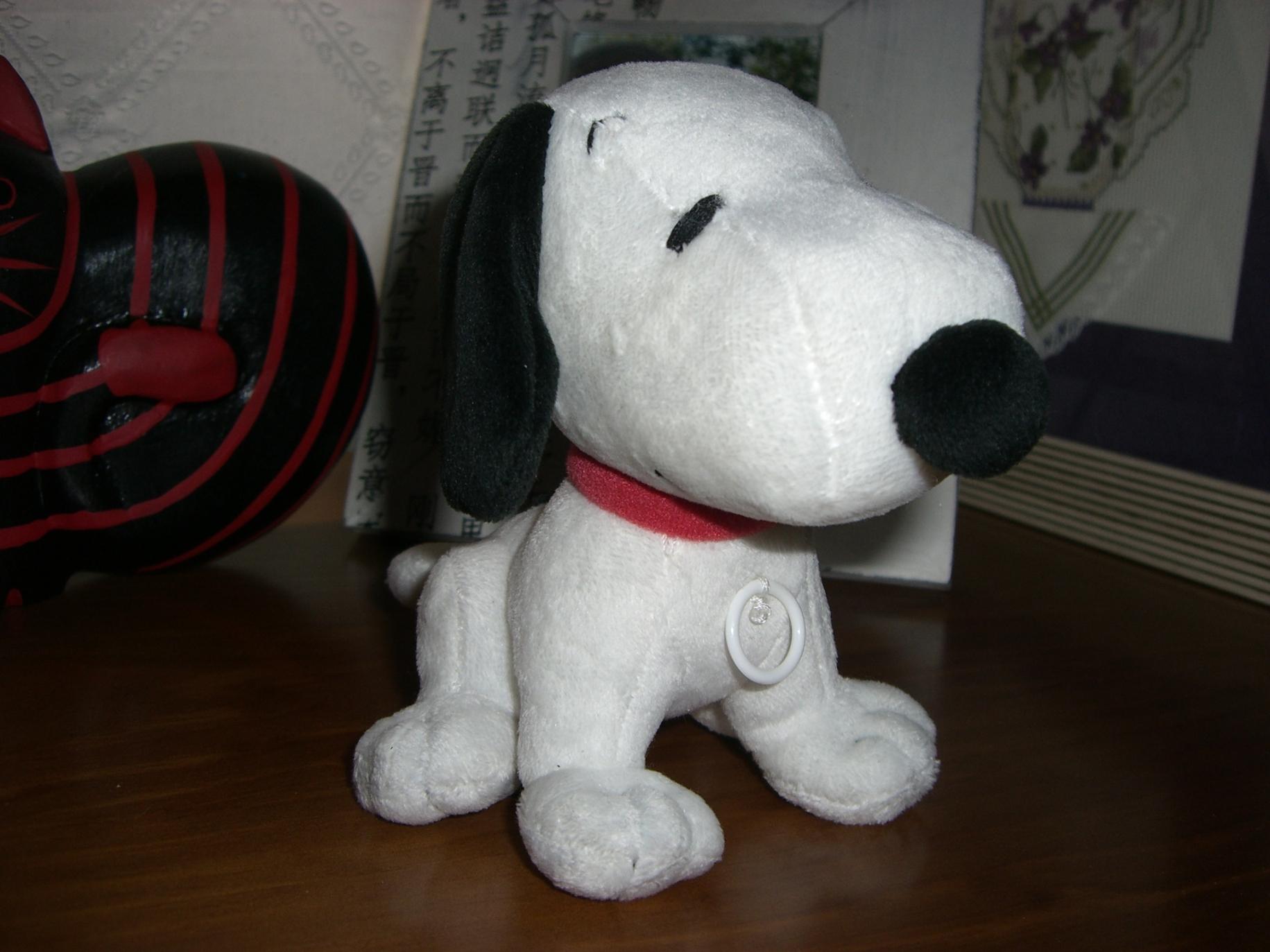 Snoopydoll