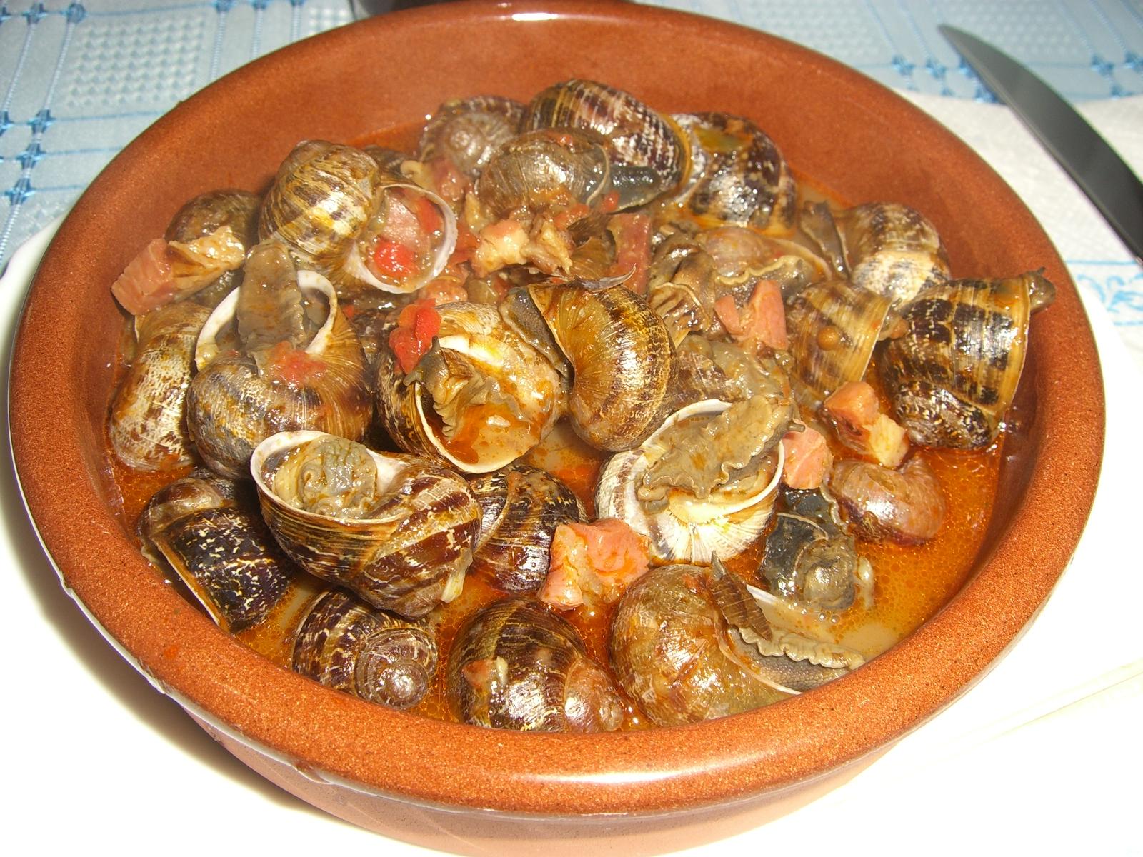 Caracoles nihon mon amour for Caracol de jardin alimentacion