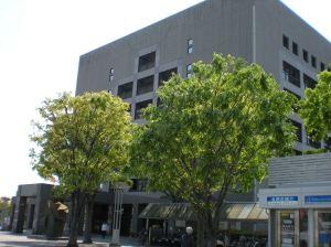Ayuntamiento de Ebina (Kanagawa)