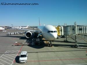 JAL plane